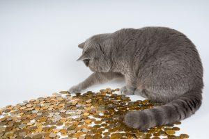 The World's Richest Animals