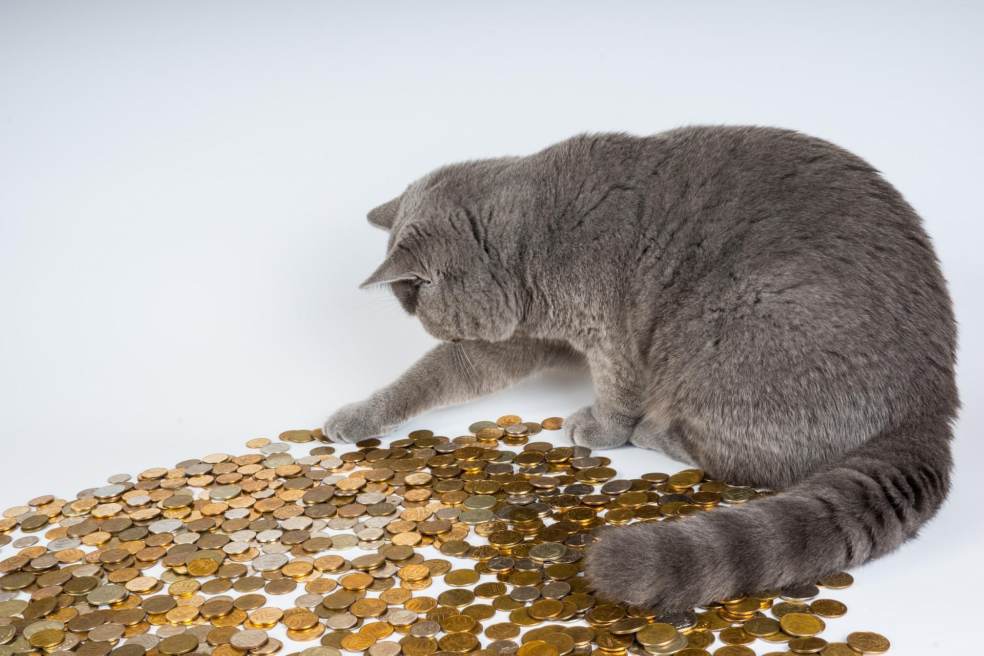 The Worlds Richest Animals